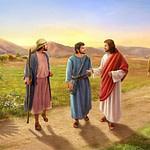 Расписание Богослужений 17-24 января 2021 г.