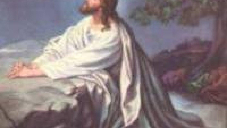 modlitwa w ogrojcu 2